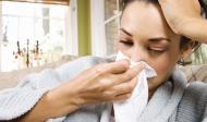 Zvyšování imunity organismu