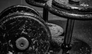 Cviky na trapézy s jednoručkami, kladkami a stroji