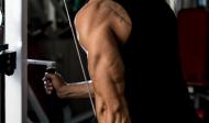 Cviky na tricepsy s kladkami a na strojích